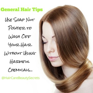Soap Nut Hair Tip